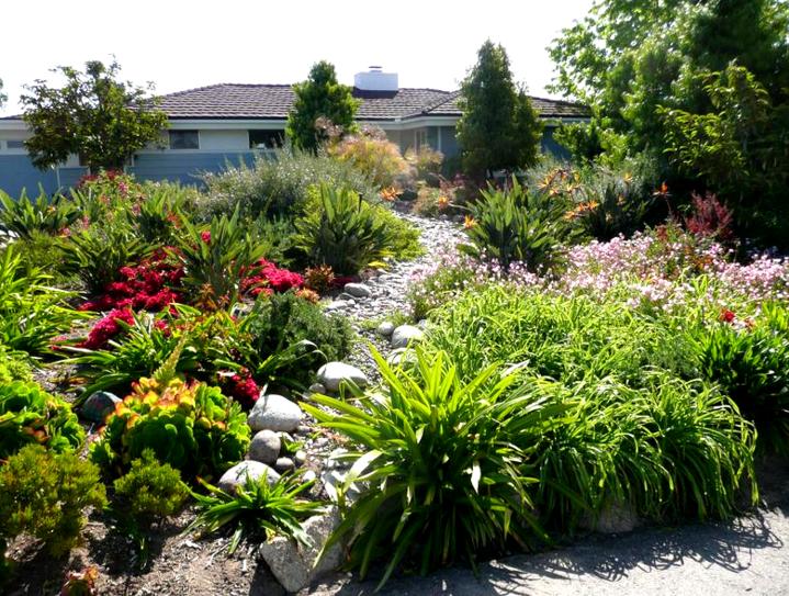 Natural Aspect Gardenscape | La Mesa, CA 91943